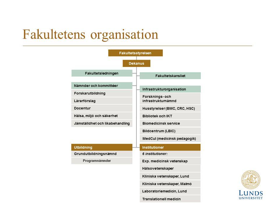Fakultetens organisation