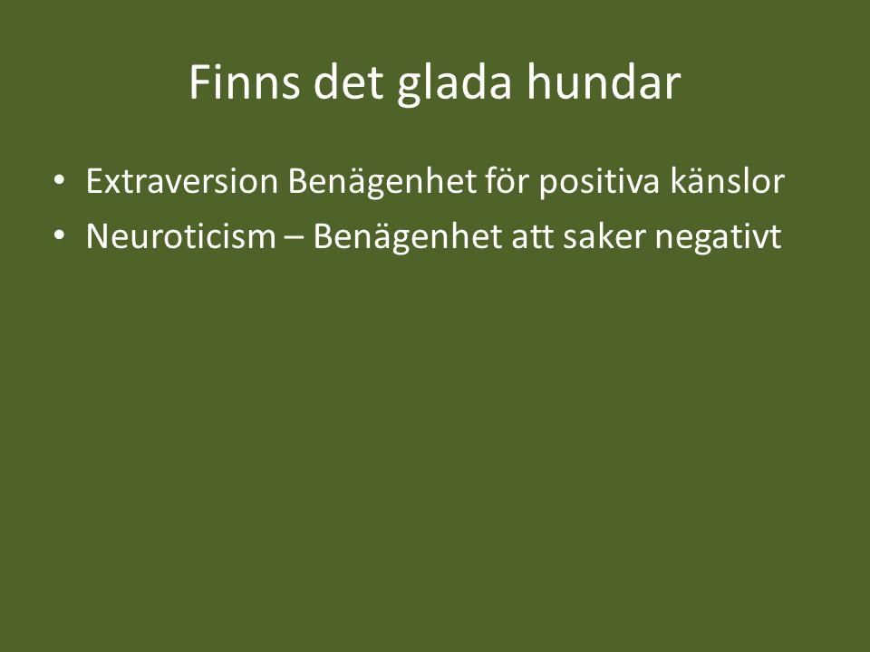 Finns det glada hundar Extraversion Benägenhet för positiva känslor Neuroticism – Benägenhet att saker negativt