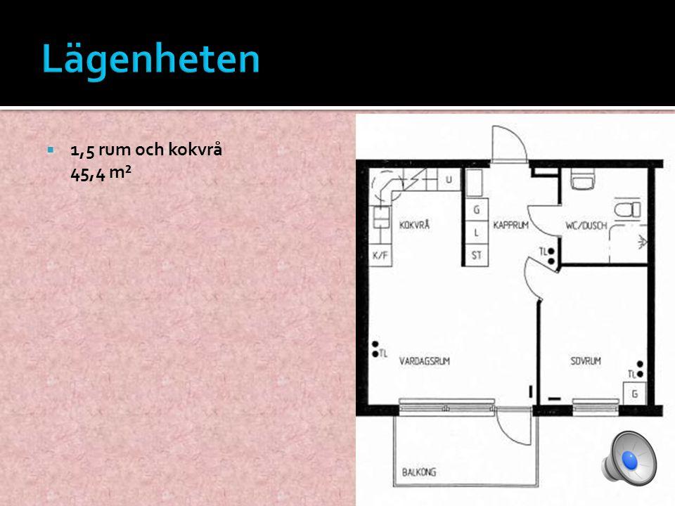  1,5 rum och kokvrå 45,4 m²
