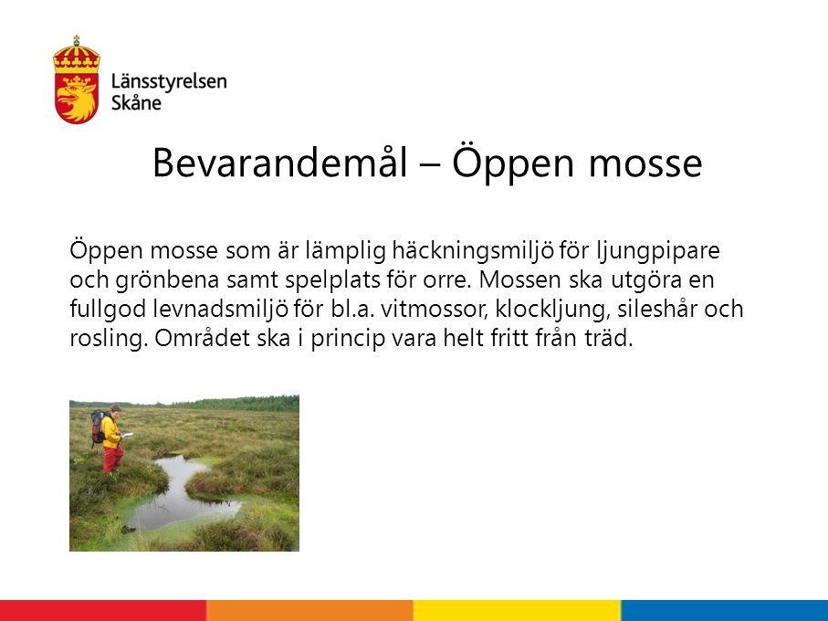 Bevarandemål – Öppen mosse Öppen mosse som är lämplig häckningsmiljö för ljungpipare och grönbena samt spelplats för orre.
