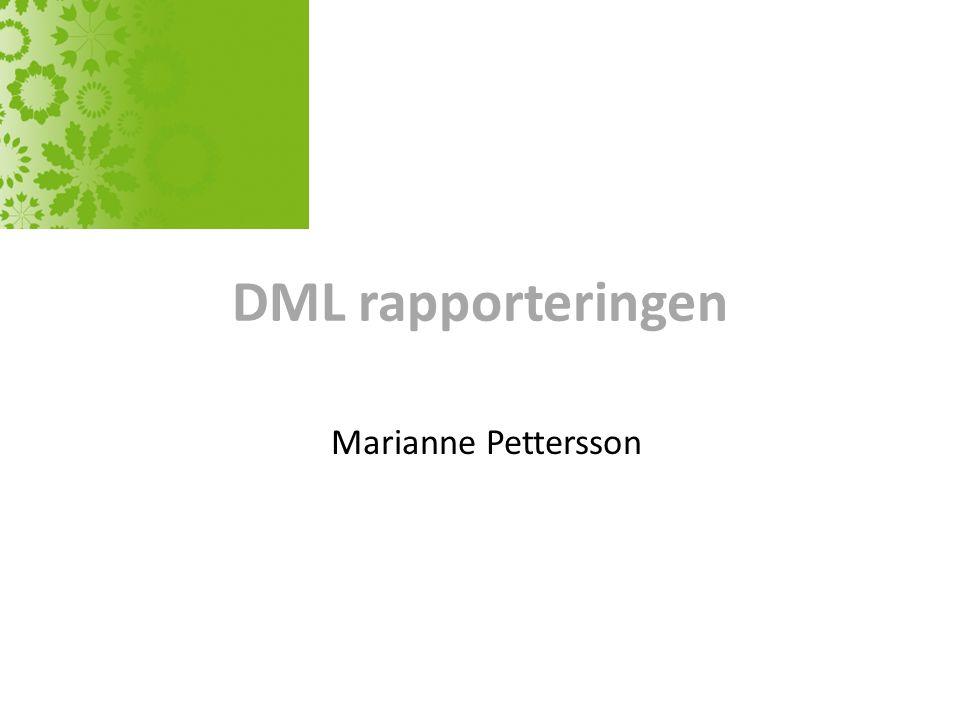 DML rapporteringen Marianne Pettersson