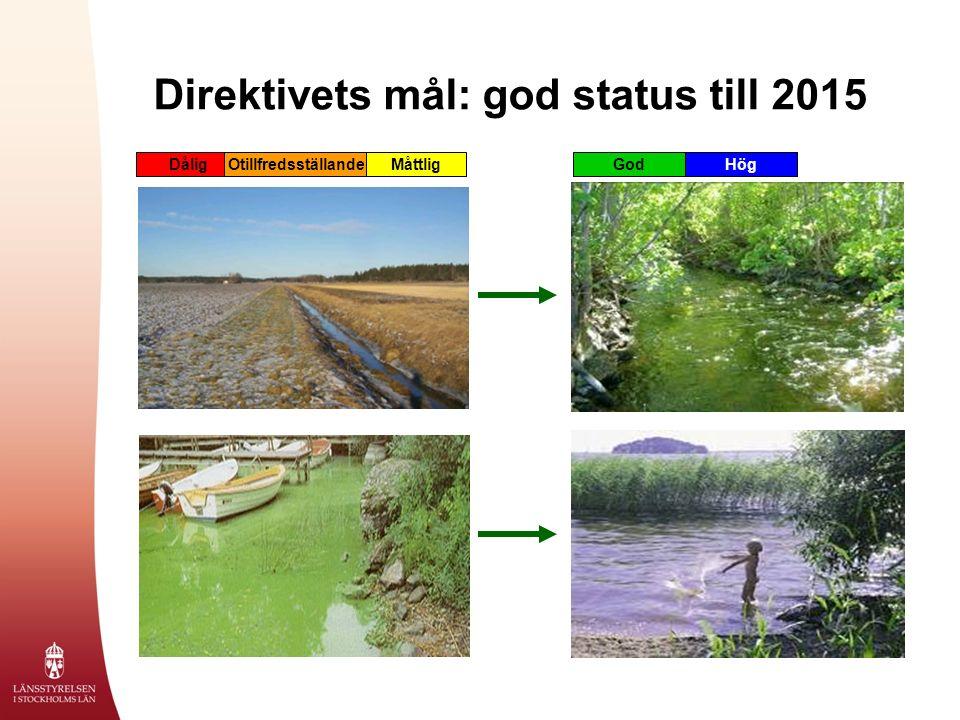 Direktivets mål: god status till 2015 DåligOtillfredsställandeMåttligGodHög