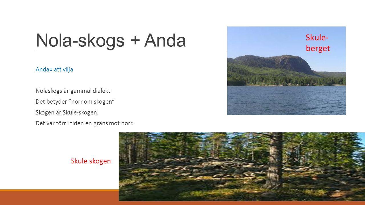 Nola-skogs + Anda Anda= att vilja Nolaskogs är gammal dialekt Det betyder norr om skogen Skogen är Skule-skogen.