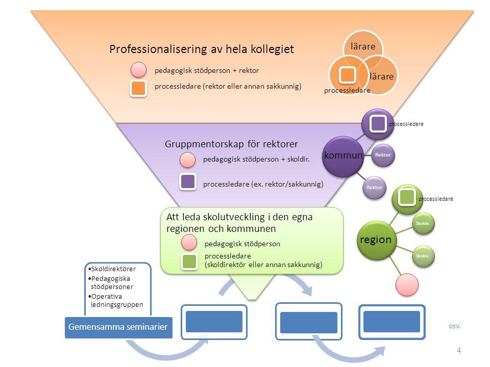 Gruppmentorskap för rektorer pedagogisk stödperson + skoldirektör processledare (ex.