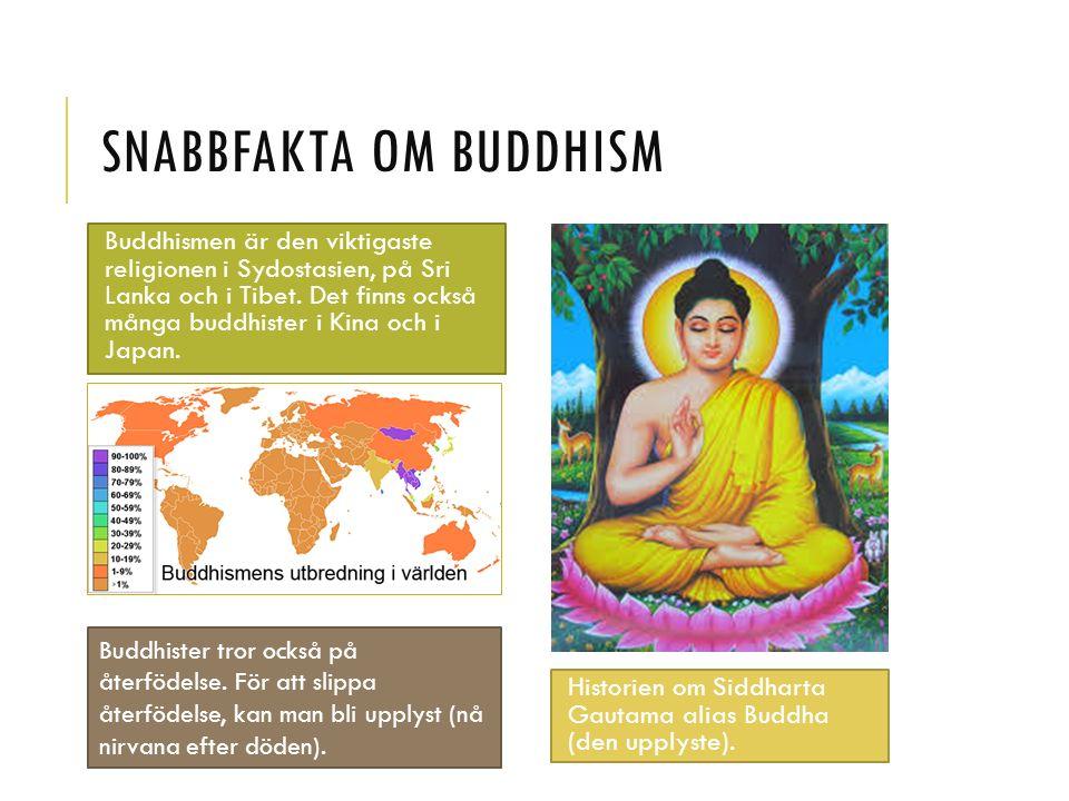 SNABBFAKTA OM BUDDHISM Buddhismen är den viktigaste religionen i Sydostasien, på Sri Lanka och i Tibet.
