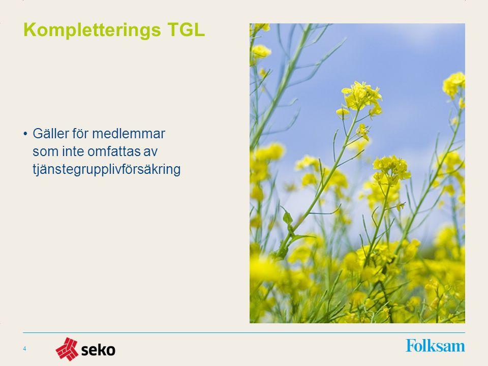 Innehållsyta Rubrikyta Kompletterings TGL Gäller för medlemmar som inte omfattas av tjänstegrupplivförsäkring 4