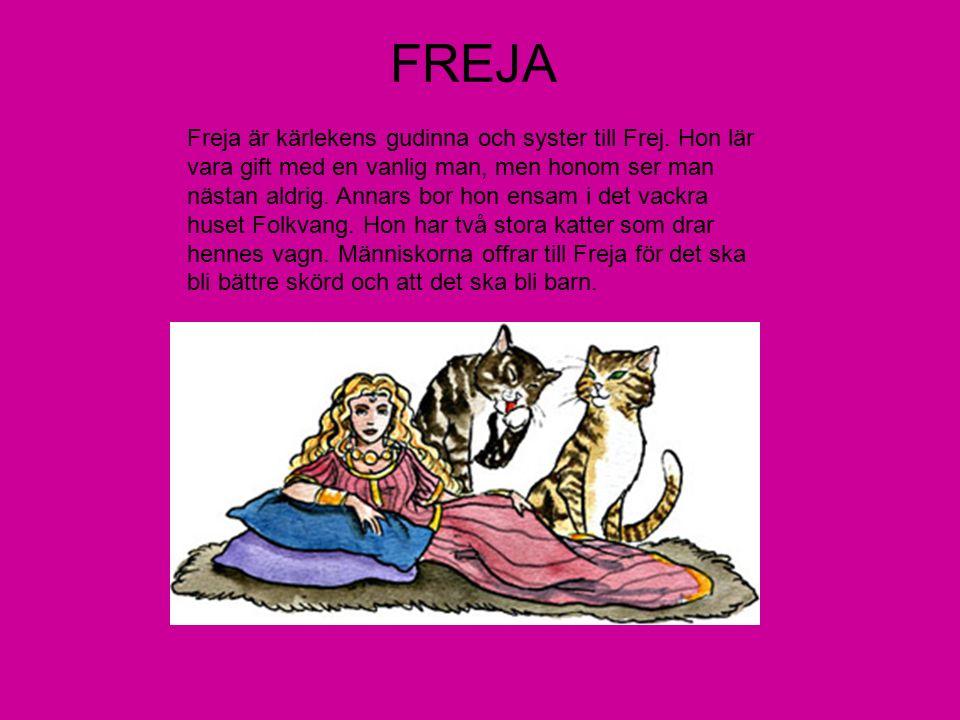 FREJA Freja är kärlekens gudinna och syster till Frej. Hon lär vara gift med en vanlig man, men honom ser man nästan aldrig. Annars bor hon ensam i de