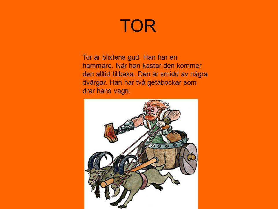 TOR Tor är blixtens gud. Han har en hammare. När han kastar den kommer den alltid tillbaka. Den är smidd av några dvärgar. Han har två getabockar som