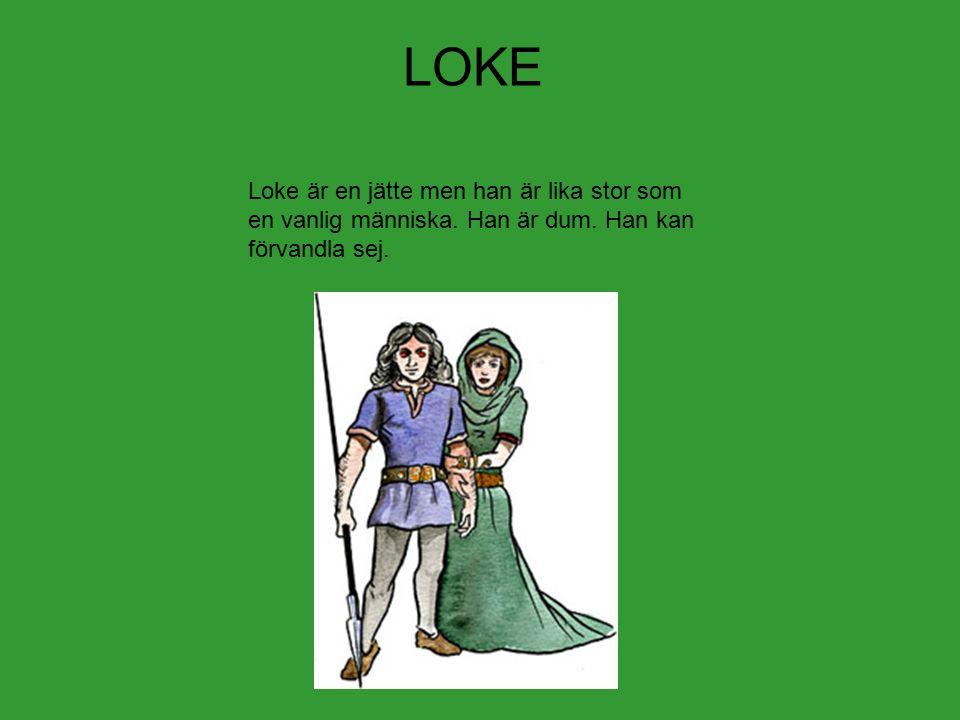 LOKE Loke är en jätte men han är lika stor som en vanlig människa. Han är dum. Han kan förvandla sej.