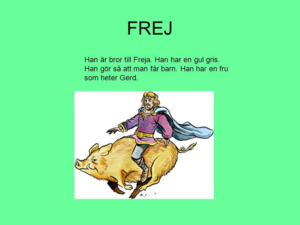 FREJ Han är bror till Freja. Han har en gul gris. Han gör så att man får barn. Han har en fru som heter Gerd.