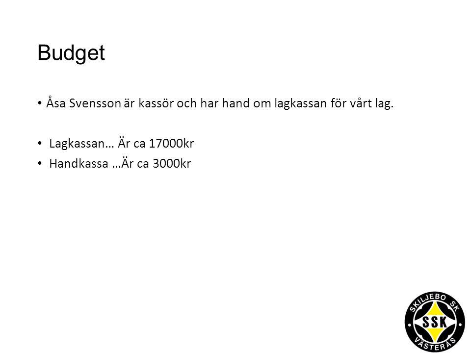 Vi vill ha hjälp med… -Någon som tillsammans med Åsa kan ha hand om lagkassan: Michael Österberg -Hjälptränare: Pelle, Robert, Pierre.