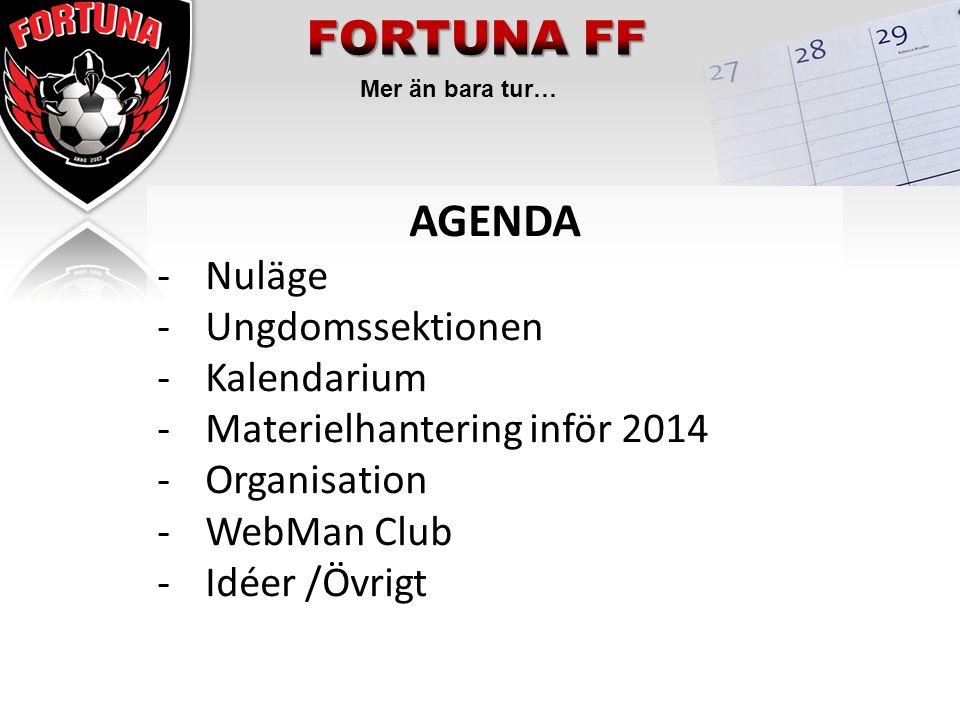 Mer än bara tur… AGENDA -Nuläge -Ungdomssektionen -Kalendarium -Materielhantering inför 2014 -Organisation -WebMan Club -Idéer /Övrigt