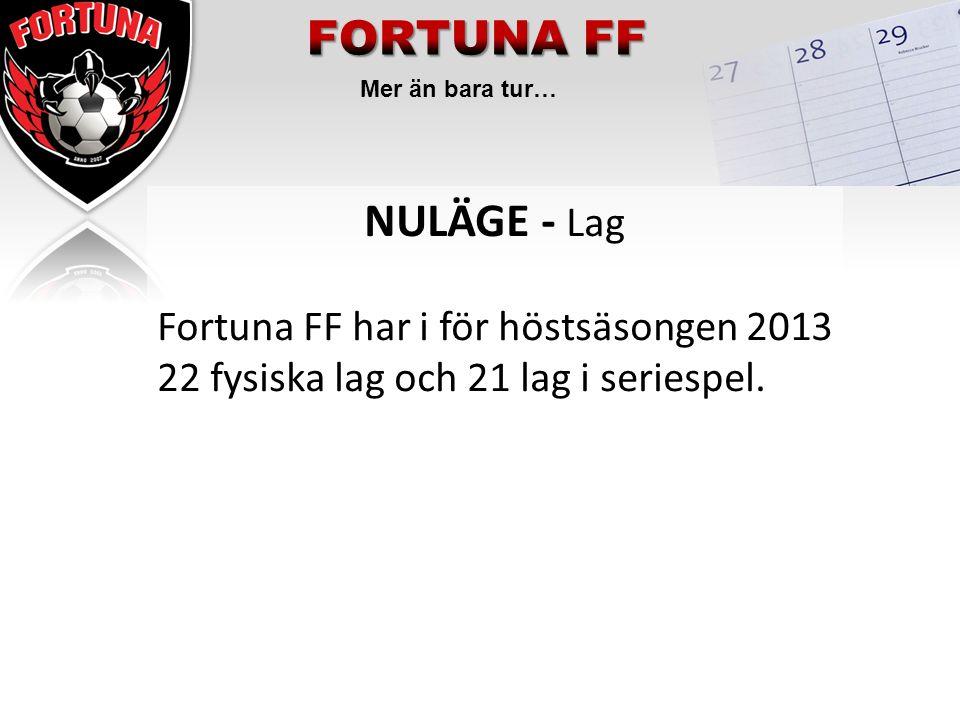 Mer än bara tur… NULÄGE - Lag Fortuna FF har i för höstsäsongen 2013 22 fysiska lag och 21 lag i seriespel.