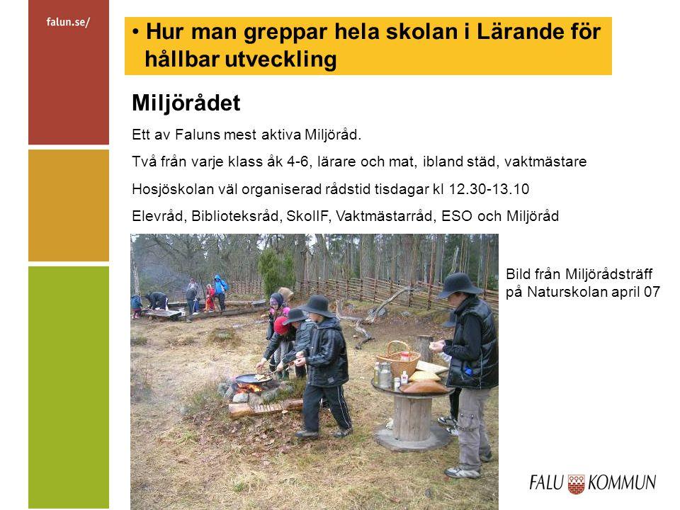 Hur man greppar hela skolan i Lärande för hållbar utveckling Miljörådet Ett av Faluns mest aktiva Miljöråd.