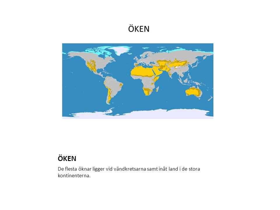 ÖKEN De flesta öknar ligger vid vändkretsarna samt inåt land i de stora kontinenterna.