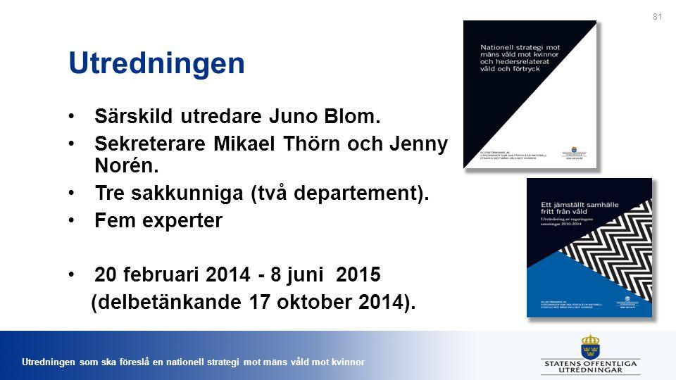 Utredningen som ska föreslå en nationell strategi mot mäns våld mot kvinnor Utredningen Särskild utredare Juno Blom.