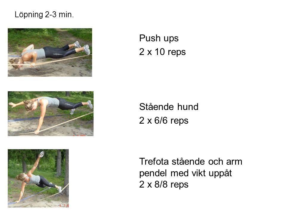 Push ups 2 x 10 reps Stående hund 2 x 6/6 reps Löpning 2-3 min.