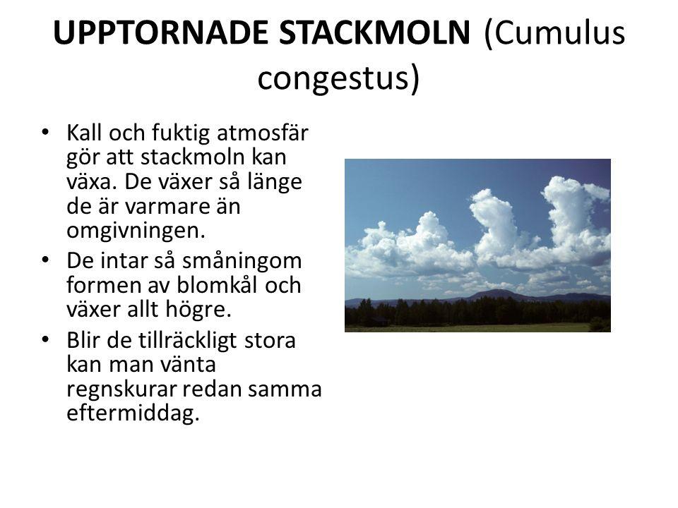 UPPTORNADE STACKMOLN (Cumulus congestus) Kall och fuktig atmosfär gör att stackmoln kan växa.