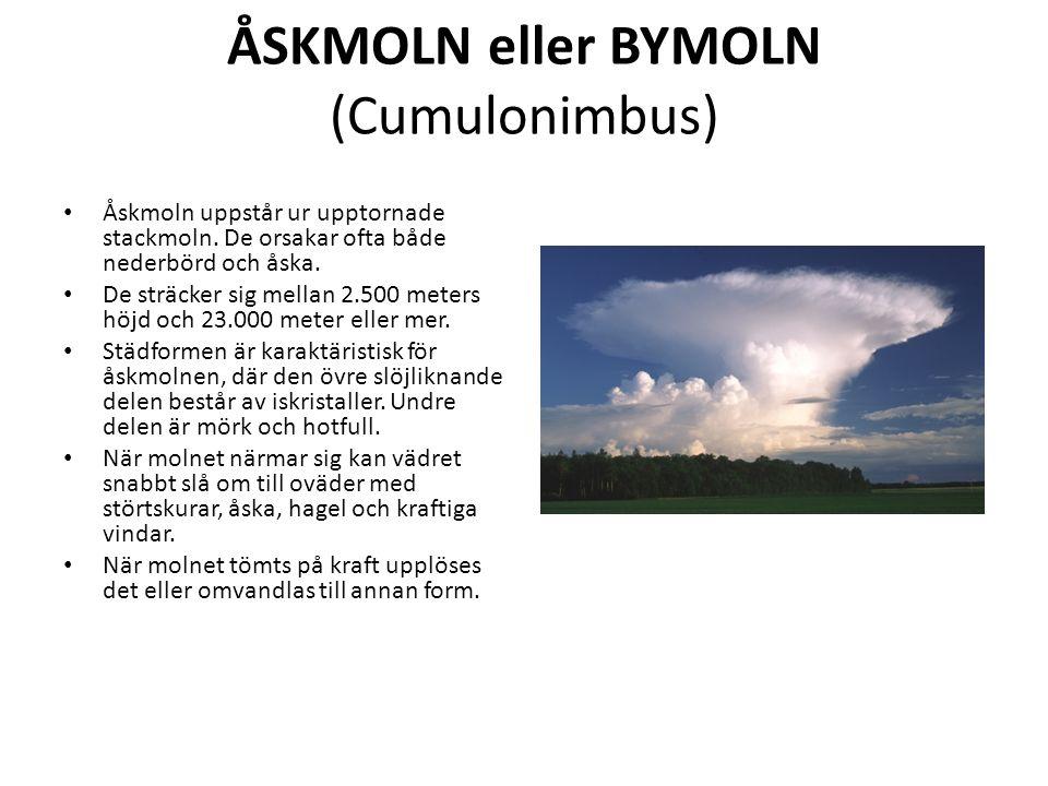 ÅSKMOLN eller BYMOLN (Cumulonimbus) Åskmoln uppstår ur upptornade stackmoln.