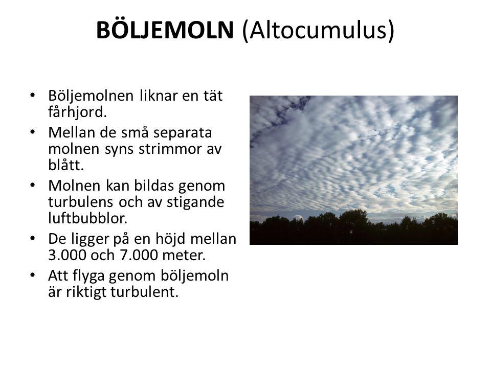 BÖLJEMOLN (Altocumulus) Böljemolnen liknar en tät fårhjord.