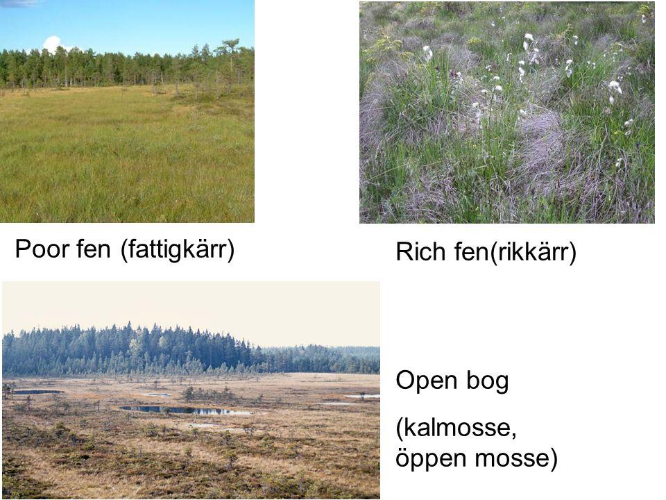 Poor fen (fattigkärr) Rich fen(rikkärr) Open bog (kalmosse, öppen mosse)