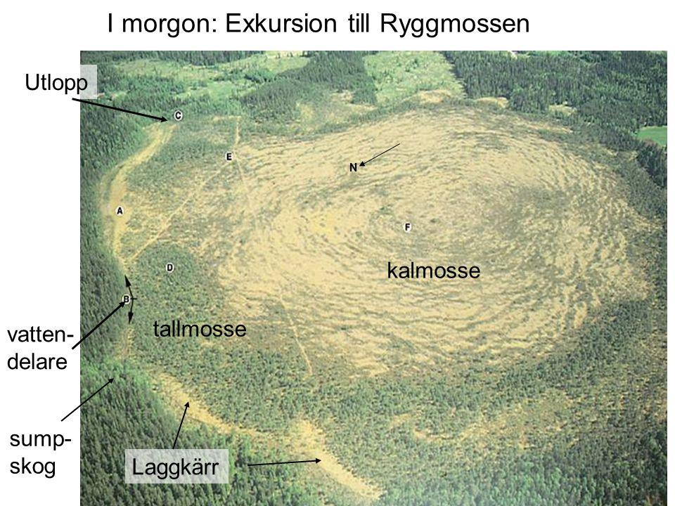 N kalmosse tallmosse Laggkärr Utlopp vatten- delare I morgon: Exkursion till Ryggmossen sump- skog