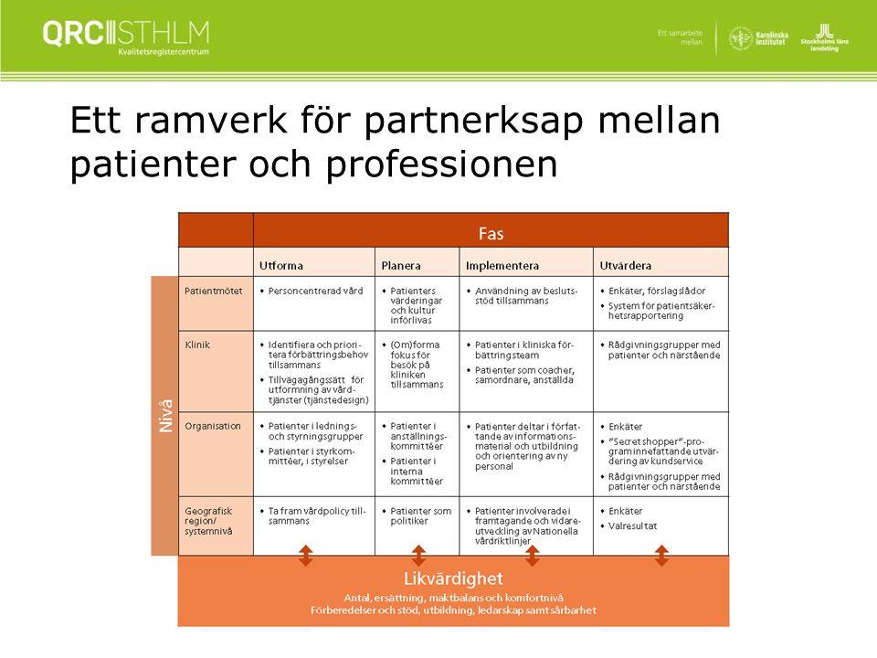 Ett ramverk för partnerksap mellan patienter och professionen