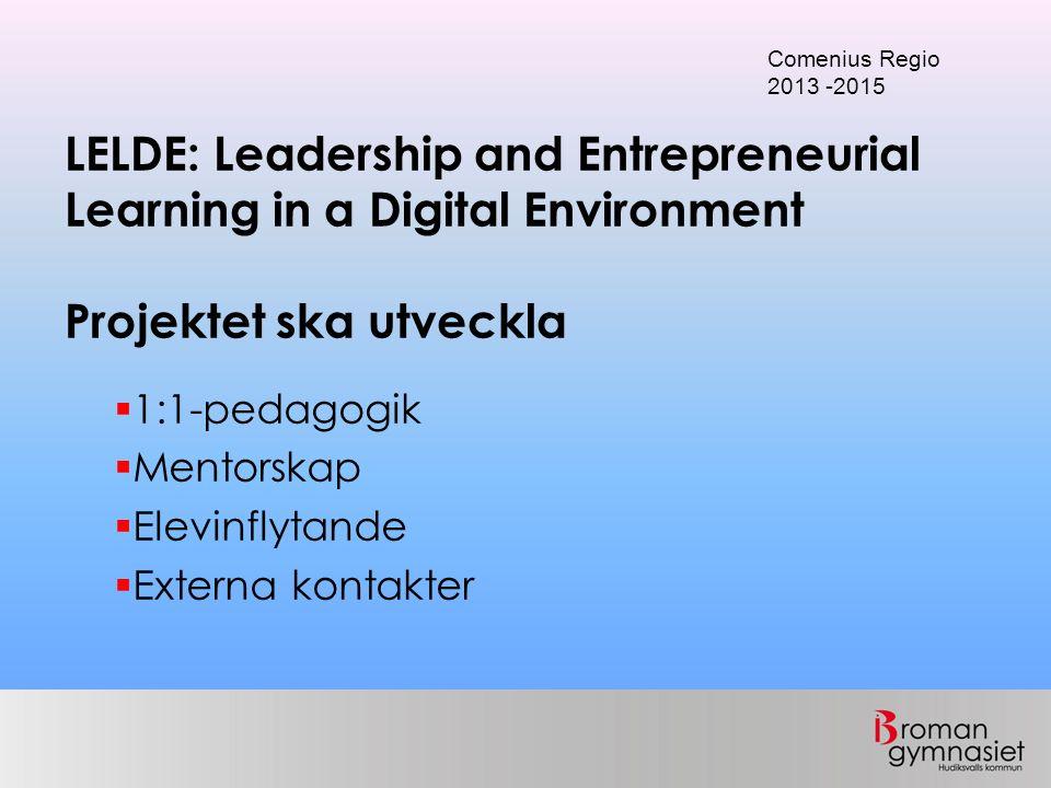  1:1-pedagogik  Mentorskap  Elevinflytande  Externa kontakter LELDE: Leadership and Entrepreneurial Learning in a Digital Environment Projektet ska utveckla Comenius Regio 2013 -2015