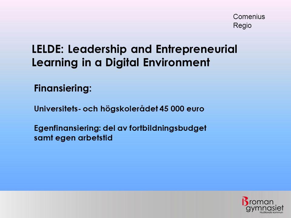 LELDE: Leadership and Entrepreneurial Learning in a Digital Environment Comenius Regio Finansiering: Universitets- och högskolerådet 45 000 euro Egenf