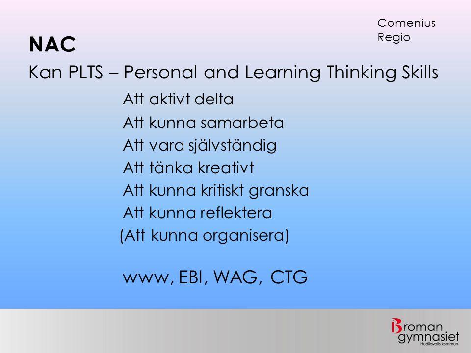 NAC Kan PLTS – Personal and Learning Thinking Skills Att aktivt delta Att kunna samarbeta Att vara självständig Att tänka kreativt Att kunna kritiskt granska Att kunna reflektera (Att kunna organisera) www, EBI, WAG, CTG Comenius Regio