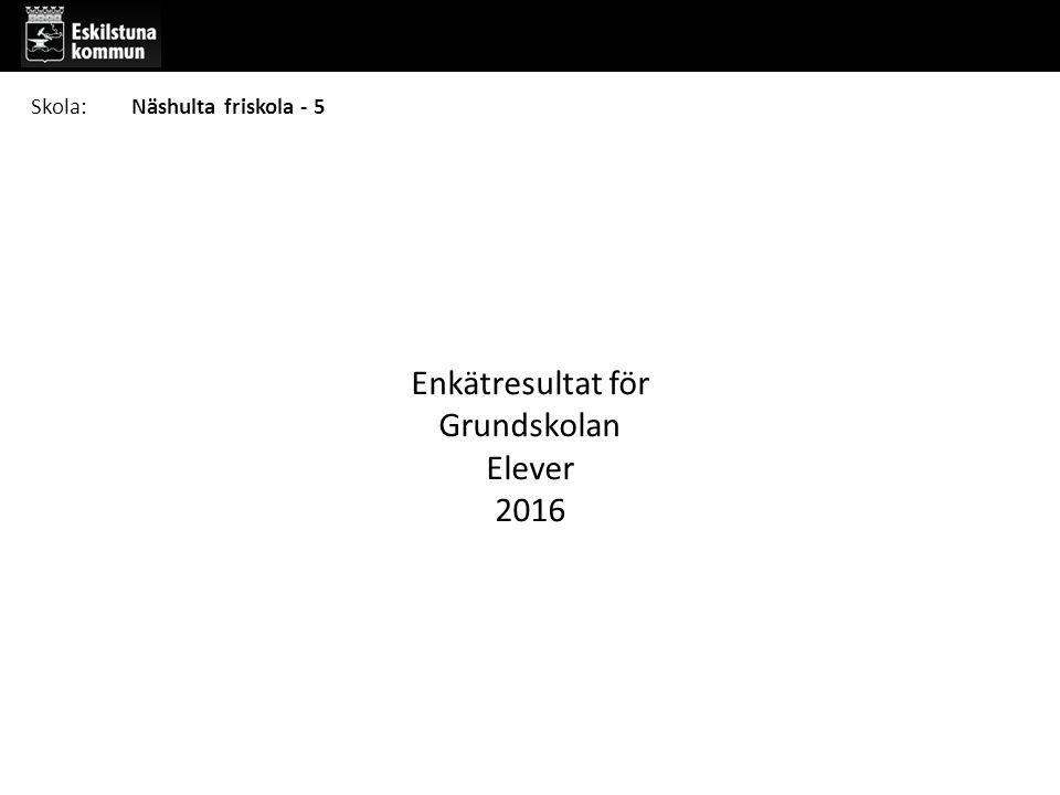 Enkätresultat för Grundskolan Elever 2016 Skola:Näshulta friskola - 5