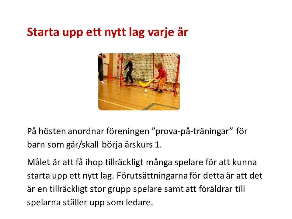 Starta upp ett nytt lag varje år På hösten anordnar föreningen prova-på-träningar för barn som går/skall börja årskurs 1.