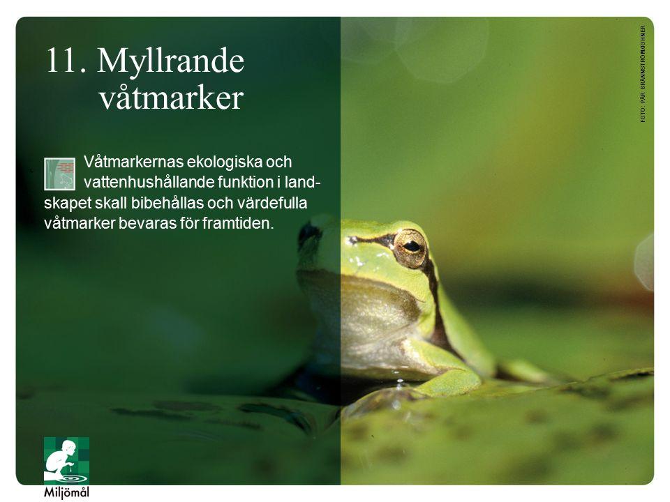 11. Myllrande våtmarker Våtmarkernas ekologiska och vattenhushållande funktion i land- skapet skall bibehållas och värdefulla våtmarker bevaras för fr
