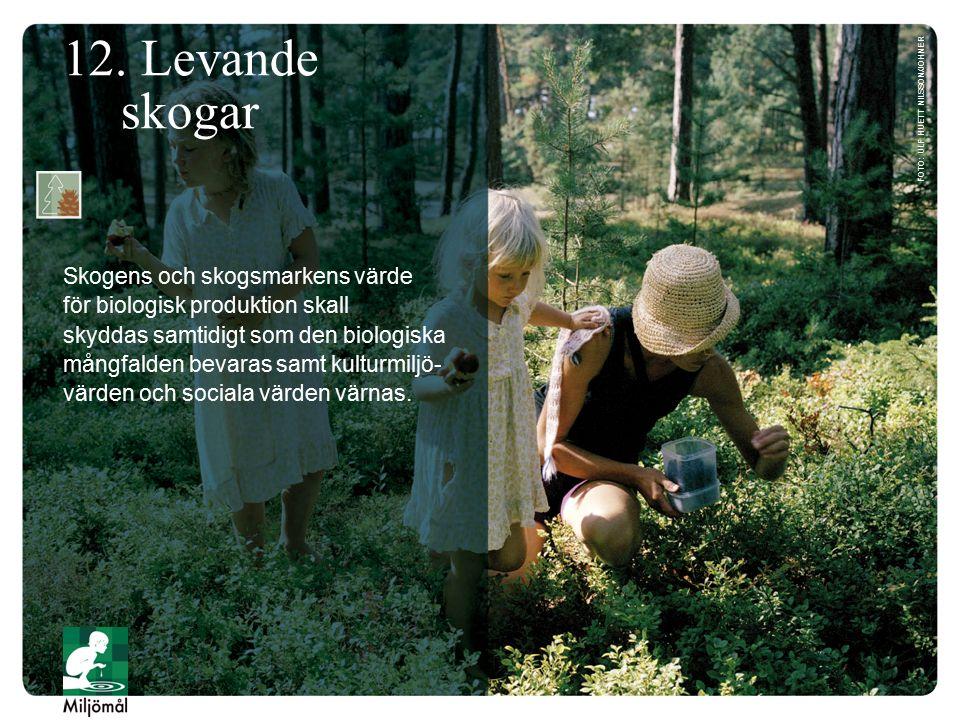 12. Levande skogar Skogens och skogsmarkens värde för biologisk produktion skall skyddas samtidigt som den biologiska mångfalden bevaras samt kulturmi