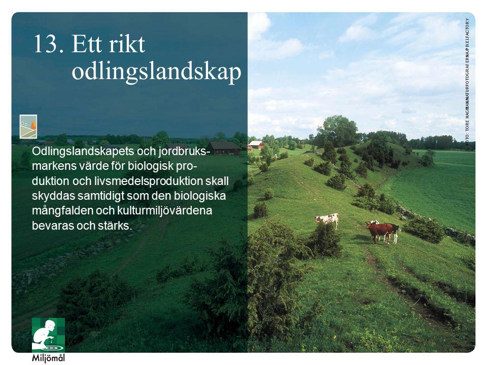 13. Ett rikt odlingslandskap Odlingslandskapets och jordbruks- markens värde för biologisk pro- duktion och livsmedelsproduktion skall skyddas samtidi
