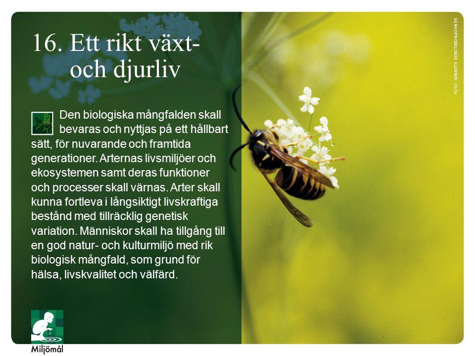 16. Ett rikt växt- och djurliv Den biologiska mångfalden skall bevaras och nyttjas på ett hållbart sätt, för nuvarande och framtida generationer. Arte