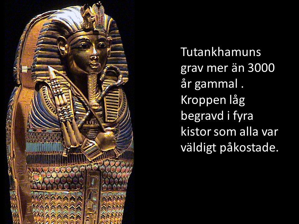 Den här masken av guld låg täckt över Tutankhamuns ansikte.