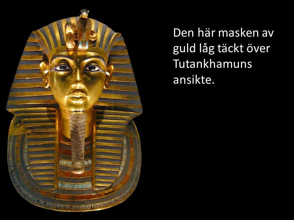 Bilden visar när man för första gången öppnade Tutankhamuns grav mer än 3000 år gammal kistor.