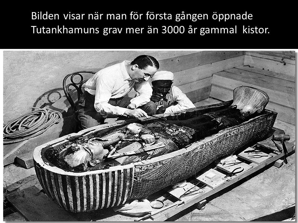 Graven var fylld med tusentals skatter.