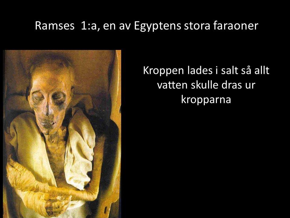 Ramses 1:a, en av Egyptens stora faraoner Kroppen lades i salt så allt vatten skulle dras ur kropparna