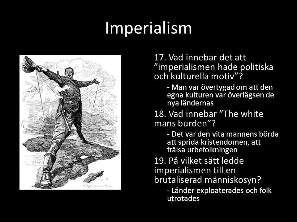 Imperialism 17. Vad innebar det att imperialismen hade politiska och kulturella motiv .