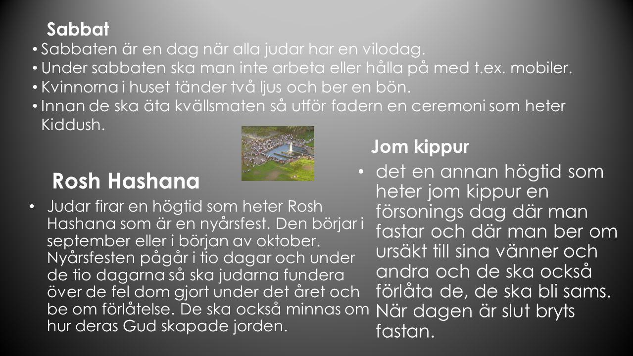 KÄLLOR: Namn Linces bildkälla Namn Linces bildkälla Bildlänk Namn linces Namn Bildlänk linces