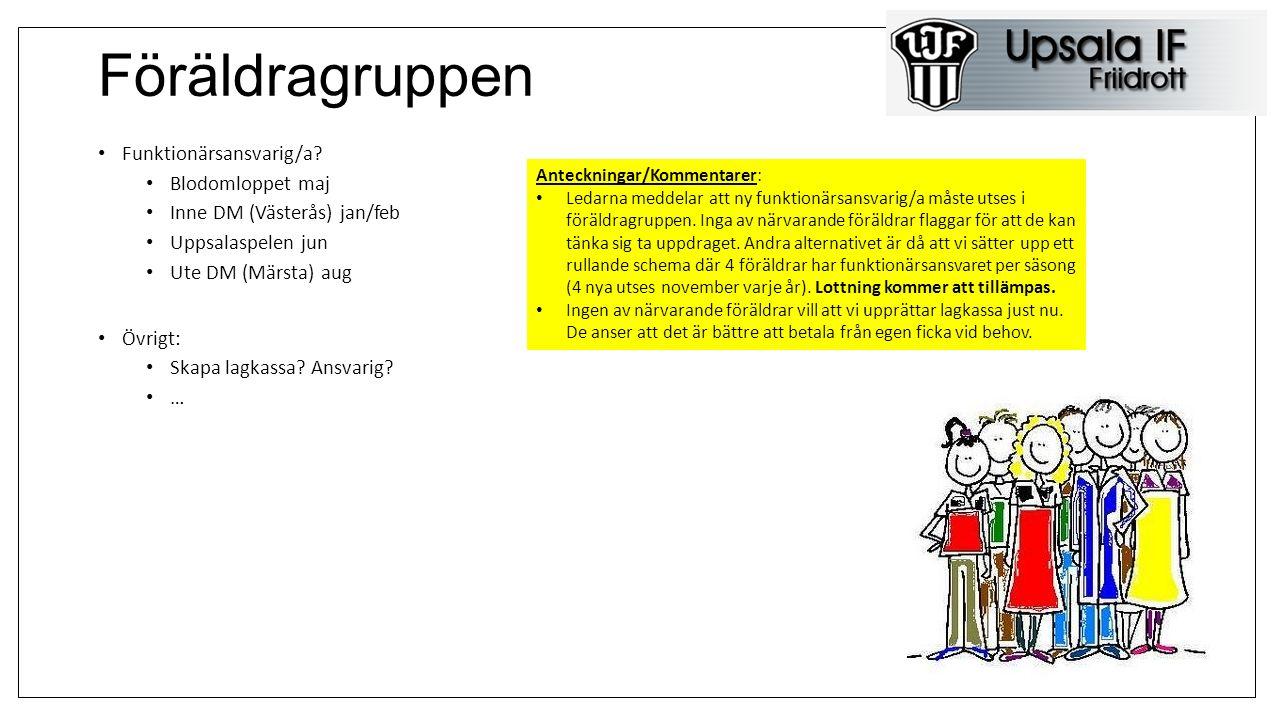Laget.se/Information Vad tycker ni om informationen från föreningen resp gruppen.