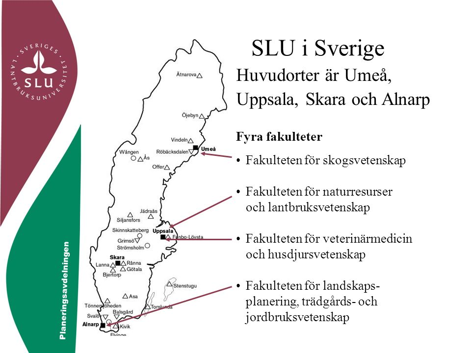 © Controllerfunktionen SLU i Sverige Fyra fakulteter Fakulteten för skogsvetenskap Fakulteten för naturresurser och lantbruksvetenskap Fakulteten för veterinärmedicin och husdjursvetenskap Fakulteten för landskaps- planering, trädgårds- och jordbruksvetenskap Huvudorter är Umeå, Uppsala, Skara och Alnarp Planeringsavdelningen