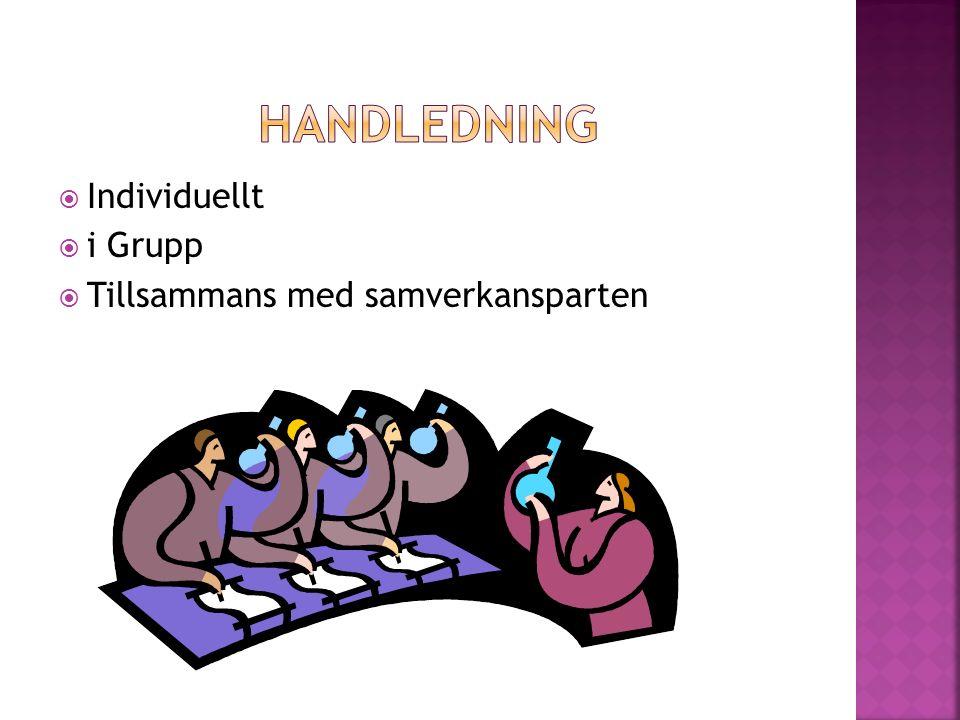  Individuellt  i Grupp  Tillsammans med samverkansparten