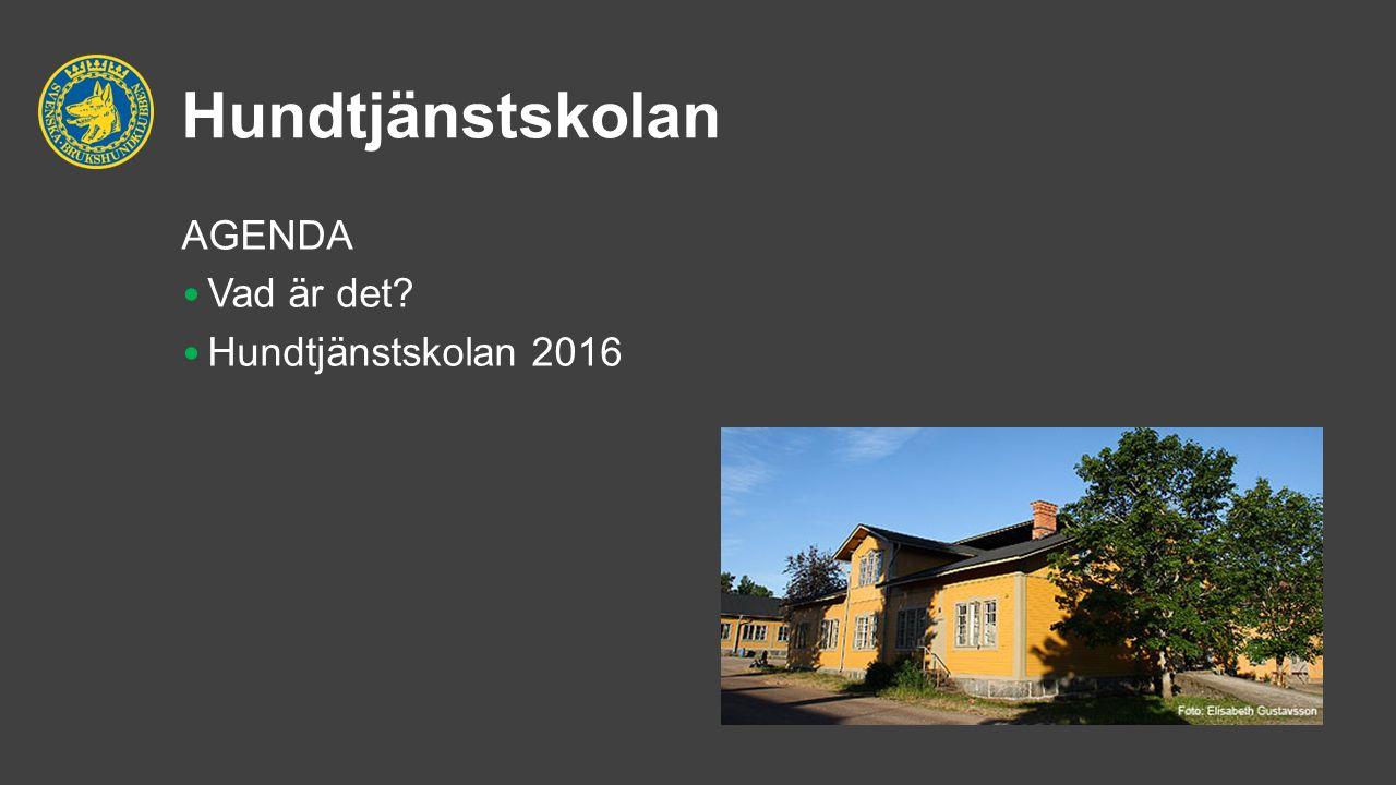 Hundtjänstskolan AGENDA Vad är det? Hundtjänstskolan 2016