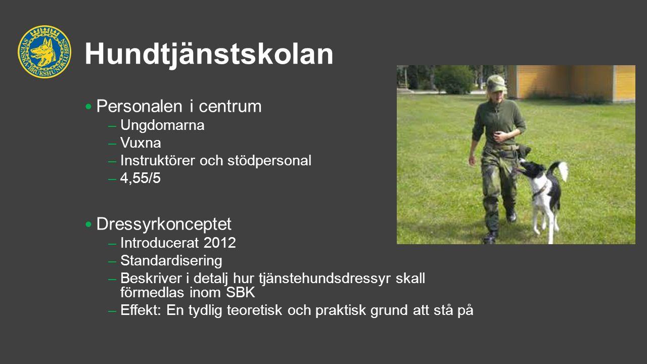 Hundtjänstskolan Personalen i centrum –Ungdomarna –Vuxna –Instruktörer och stödpersonal –4,55/5 Dressyrkonceptet –Introducerat 2012 –Standardisering –