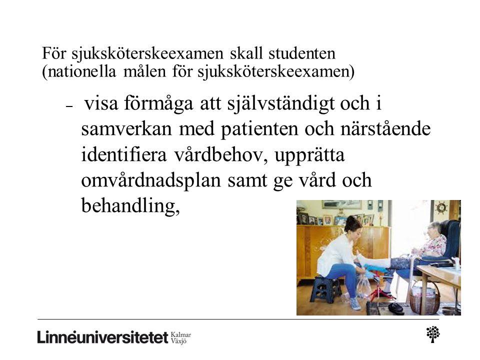 För sjuksköterskeexamen skall studenten (nationella målen för sjuksköterskeexamen) – visa förmåga att självständigt och i samverkan med patienten och närstående identifiera vårdbehov, upprätta omvårdnadsplan samt ge vård och behandling,