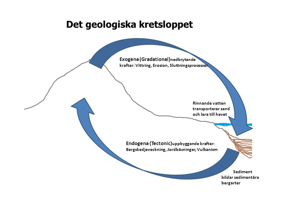 Endogena (Tectonic) uppbyggande krafter: Bergskedjeveckning, Jordbävningar, Vulkanism Exogena (Gradational) nedbrytande krafter: Vittring, Erosion, Sluttningsprocesser Rinnande vatten transporterar sand och lera till havet Sediment bildar sedimentära bergarter Det geologiska kretsloppet