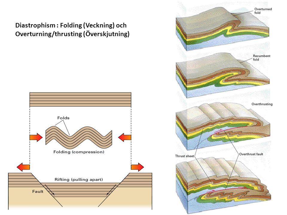 Diastrophism : Folding (Veckning) och Overturning/thrusting (Överskjutning)